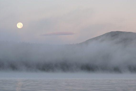 Sjön Messlingen med skog. Foto: Håkan Thenander