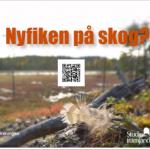 Studiecirklar i Norrbotten under våren: Nyfiken på skog?