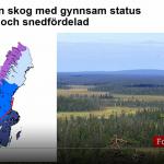 Riksdagsseminarie upplyste om krisen i skogen