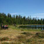 OBS! Fullbokat! Forskningsresan i Naturvårdens Utmarker v. 30, juli 2020 Arjeplog, Norrbottens län