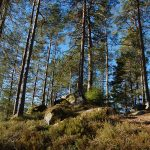 Blogg om ekoturism och naturlig reslust som gör skillnad