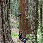 """Varför naturreservat? Kris Tompkins: """"Föreställ dig hur det skulle vara utan dem."""""""