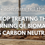 Över 500 forskare varnar EU: Sluta subventionera förbränning av trä – inte koldioxidneutralt