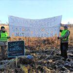 Manifestation och vandringar med Sundays for Forests