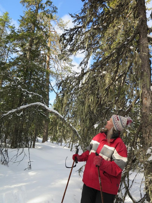 Hög tid att skydda detta område, skriver Orsa skogsgrupp