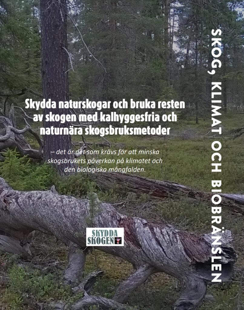 Broschyromslag som visar skog