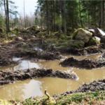 Södra kör sönder vandringsled i Kalmar län