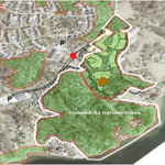 Sundays for Forests uppmärksammar hotad skog i Lysekil