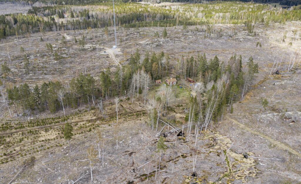 Jättestort kalhygge med litet torp vid Bälgviken Sörmland