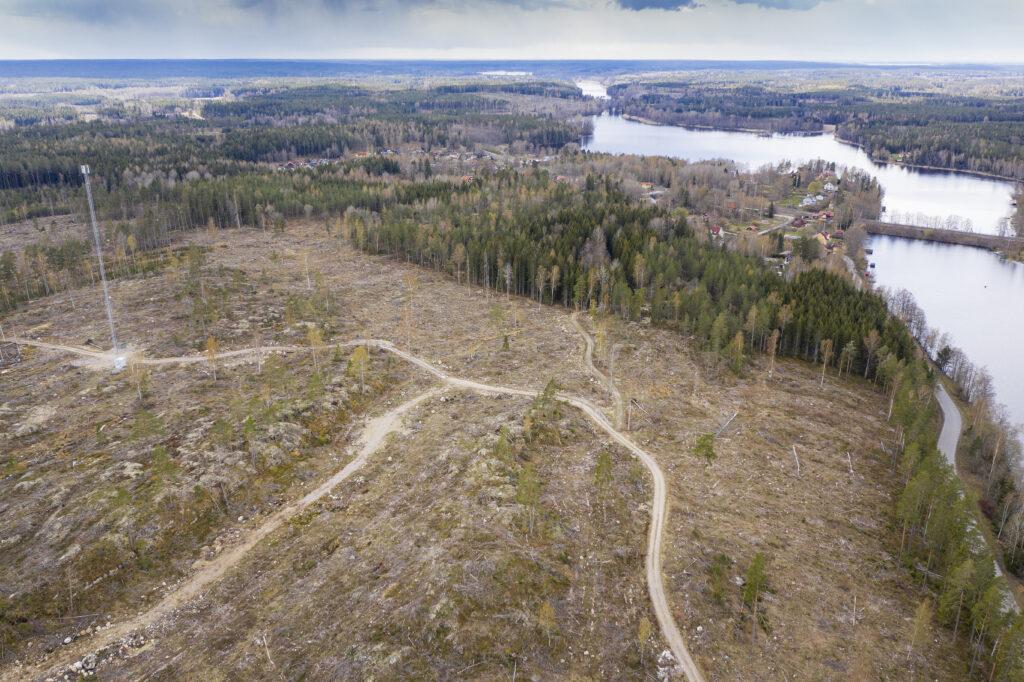 Bälgviken ett litet samhälle i Sörmland som fått sin skog kalavverkad