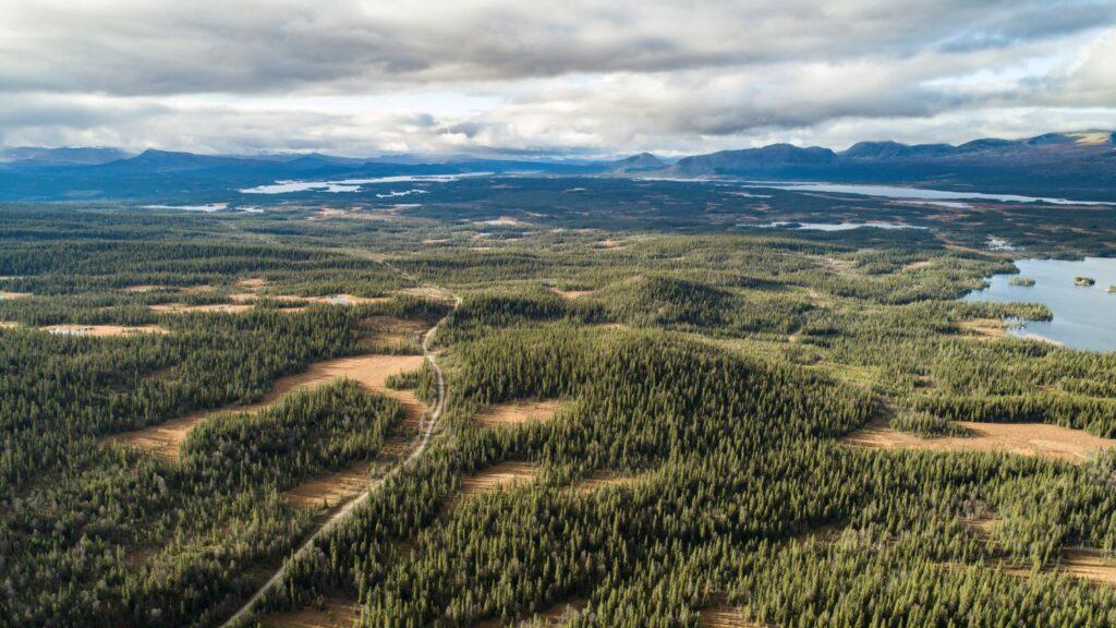 Denna bild har ett alt-attribut som är tomt. Dess filnamn är skyddaskogen.se_forestry-at-the-edge-jon-andersson2-1024x576.jpg